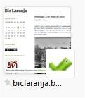 blog Bic Laranja