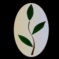 logo_editorialdivergencia