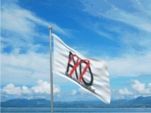 ILCAOflag